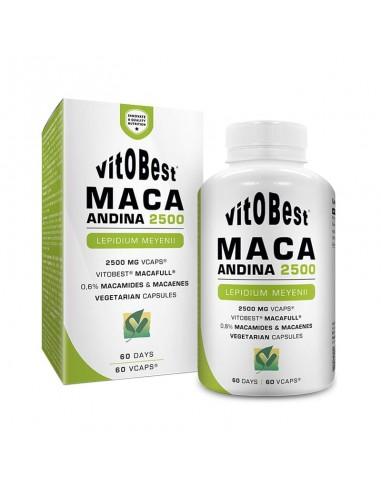 MACA ANDINA 2500 60CAPS - Vitobest